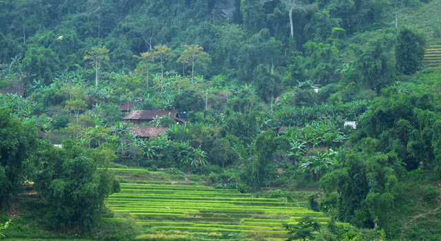 H'mong Villages