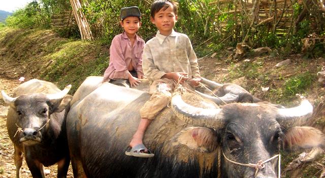 I Villaggi di Lao Chai e Ta Van