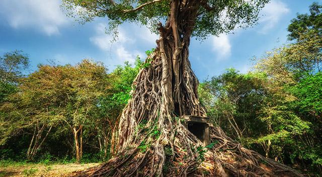 Sambor Prei Kuk Tempel