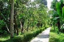 Ökodorf Thuy Bieu