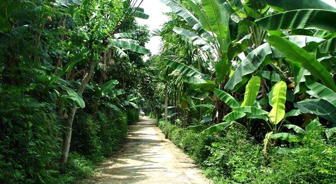 Eco-villaggio-di-Thuy-Bieu -8