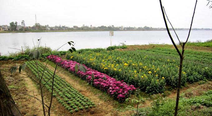 Eco-villaggio-di-Thuy-Bieu -11