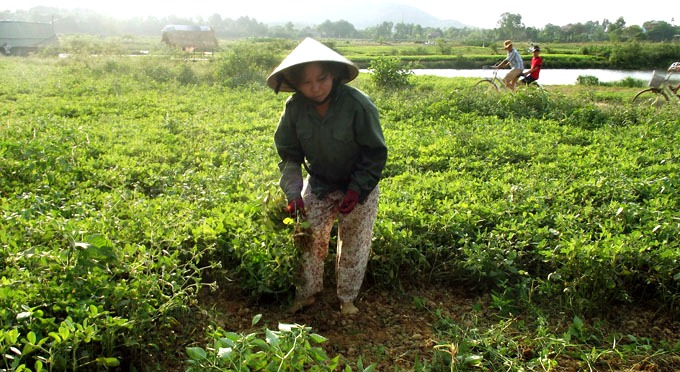 Eco-villaggio-di-Thuy-Bieu -1