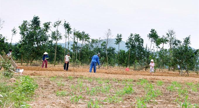 Eco-villaggio-di-Thuy-Bieu -12