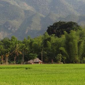 La casa su palafitta del sig. Cuong a Mai Chau