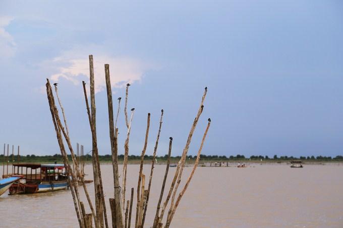visita-barca-Tonle Sap-5