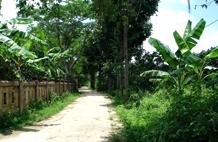 La eco-aldea de Thuy Bieu
