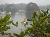 Asiatica Travel Recensioni - Testimonianze di Signore. Ferri Sandro