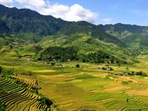 Asiatica Travel Recensioni - Testimonianze di Signore. Matteo Costa