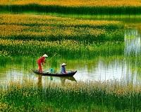 Asiatica Travel Recensioni - Testimonianze di Signore. Riccardo Morelli
