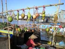 Asiatica Travel Recensioni - Testimonianze di Signore. Paolo dalla Costa