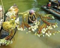 Asiatica Travel Recensioni - Testimonianze di Signora. Gabriella Pisoni