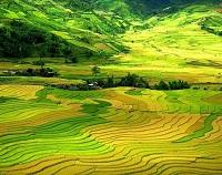 Asiatica Travel Recensioni - Testimonianze di Signore. EMANUELA GIUBBONI