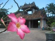 Asiatica Travel Recensioni - Testimonianze di Signora. Emilio Ponzanelli