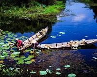 Asiatica Travel Recensioni - Testimonianze di Signore. Emilio Petrone