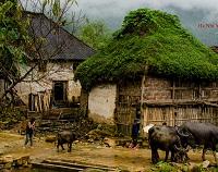 Asiatica Travel Recensioni - Testimonianze di Signore. Roberto Marossero