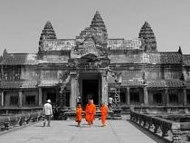 Asiatica Travel Recensioni - Testimonianze di Signore. Aldo  Serci