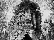Asiatica Travel Recensioni - Testimonianze di Signore. Antonino Cammareri