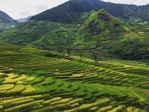 Asiatica Travel Recensioni - Testimonianze di Signore. Fedele Pascuzzi