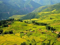 Asiatica Travel Recensioni - Testimonianze di Signore. Gianluca Fincato