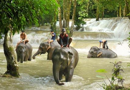La tierra color azafrán - ¡Laos!