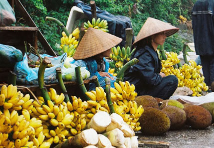 Il Vietnam da sogno