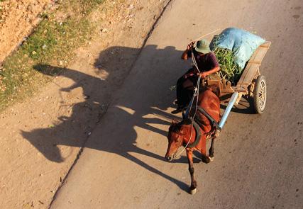 Eredità culturale Vietnam - Cambogia
