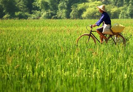 Along the border of Indochina