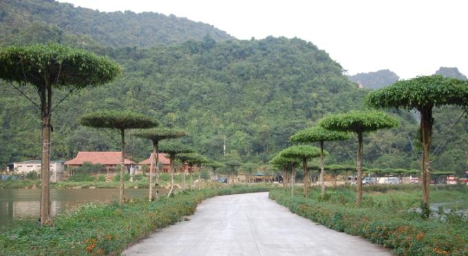 Vogelgarten Thung Nham - Ninh Binh
