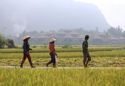 Vietnam und Kambodscha Highlights
