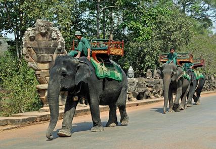 Escursione a Siem Reap