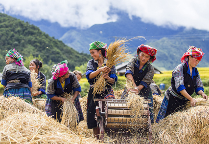 Mosaïque vietnamienne