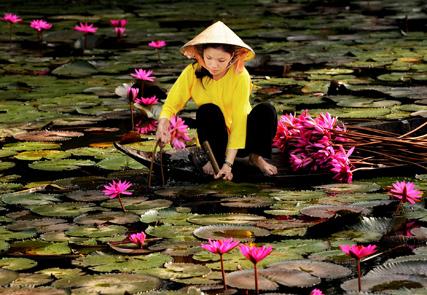 Les terres cachées du Vietnam