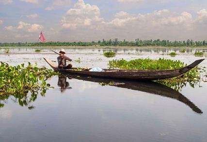 Scoperta della campagna di Cambogia